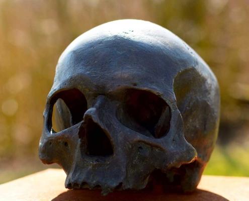 Apparato scheletrico: ricerca per scuola elementare